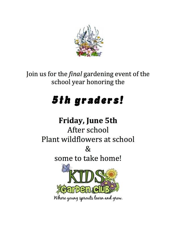 wildflower planting-2