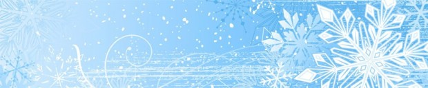 cropped-snowflake-header